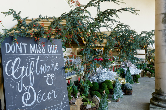 Rankine Photography - Christmas Shop 2016 - Hopetoun House - Planet Flowers